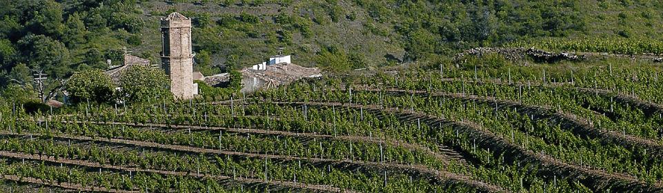Priorat wijnen