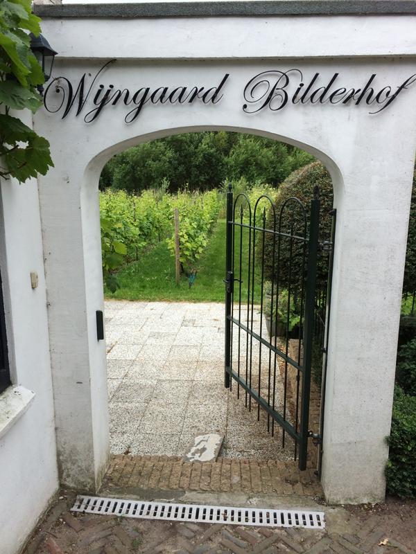 wijngaard de bilderhof